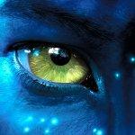 XD Na'vi XD's foto